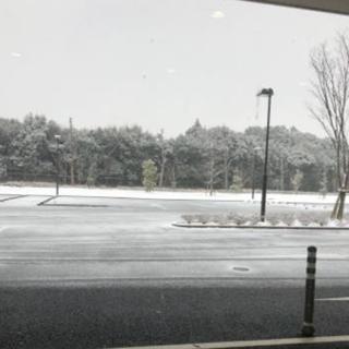 【千葉風俗】栄町ソープランド アラカルト【-A La Carte-】れいあ【雪☃️】日記画像