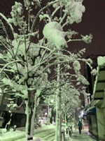 【千葉風俗】栄町ソープランド アラカルト【-A La Carte-】かのんの日記画像