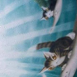 【千葉風俗】栄町ソープランド アラカルト【-A La Carte-】なこ【傘が可愛い♡】日記画像