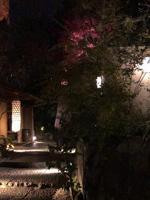 【千葉風俗】栄町ソープランド アラカルト【-A La Carte-】らんの日記画像