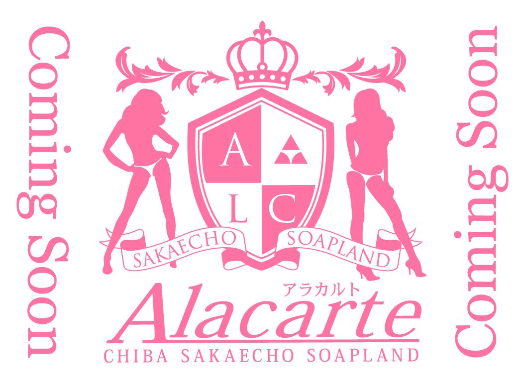 【千葉風俗】栄町ソープランド アラカルト【-A La Carte-】モデルあいり写真1